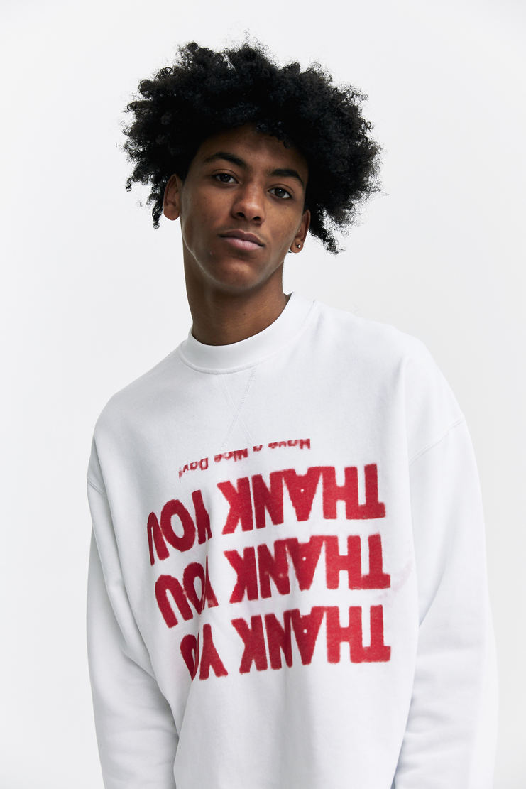 Raf Simons Printed Cropped Sweater a/w 17 aw17 jumper sweatshirt top print raf simmons