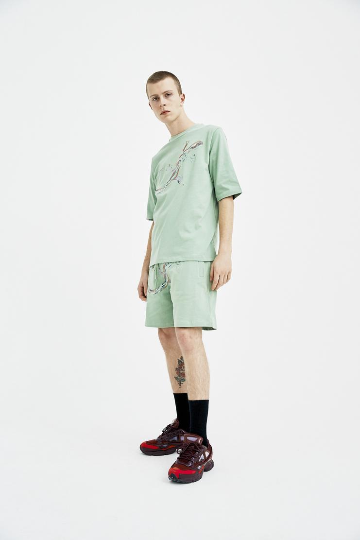 COTTWEILER dryland T-shirt cotton lizard embroidered spring summer desert sage green ss18 s/s 18 CWT45 machine a